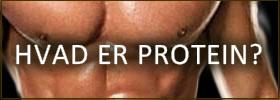 Hvad er protein?